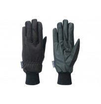 Handschoen TopGrip Winter